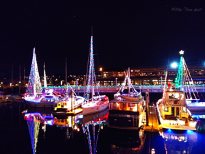 marina sailboats decked out in Christmas lights