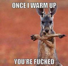 """kangaroo stretching """"fucked"""" meme"""